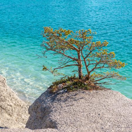 Gotland Blå Lagunen