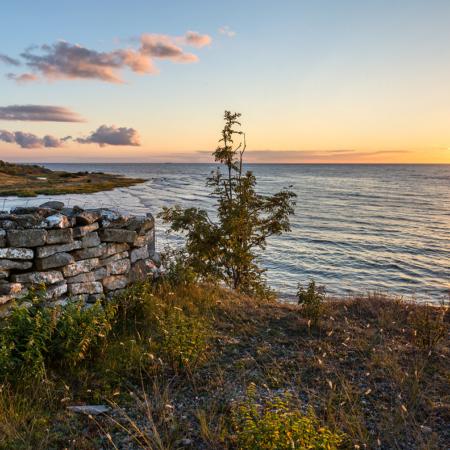 Gotland Hoburgen Solnedgång Sommar 3