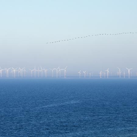 Gotland Näsudden Vindkraftverk Vår 1