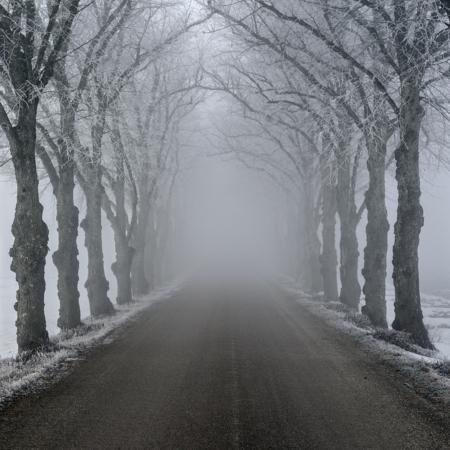 Gotland Roma Dimma Vinter 4229