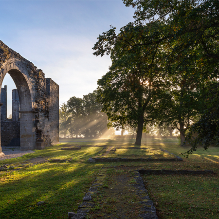 Gotland Roma Klosterruin Dimma Höst 1
