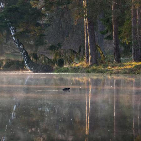 Gotland Väte Norrbys