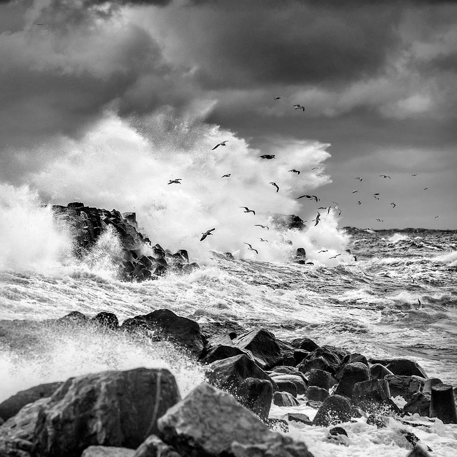 Gotland Visby Hamn Storm Höst 1 SV