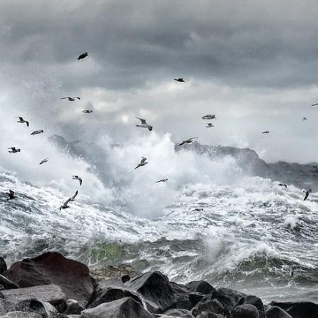Gotland Storm Visby
